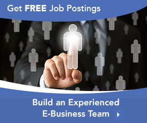Build a Powerful E-Business team