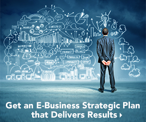 Develop an e-business strategic plan